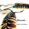 Dreams For The Daring (cd)