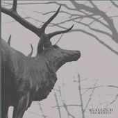 The Mantle (cd)